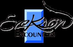Erekson Encounters - Utah Solid Surface Counters